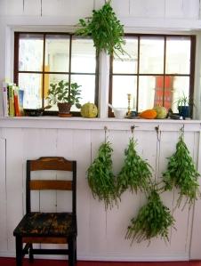 kitchen windows & tulsi