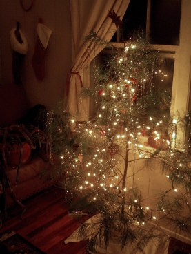yule tree 1