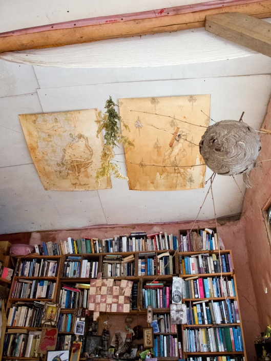 Books to ceiling and nests