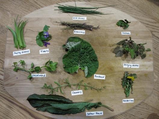 Wild Greens display