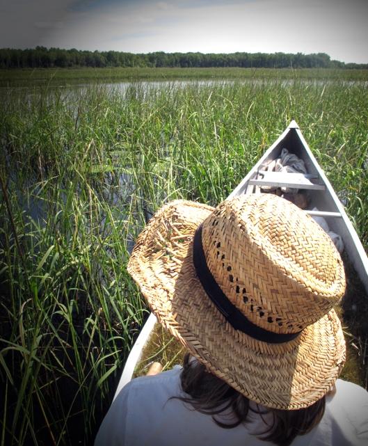 gazing out at lake