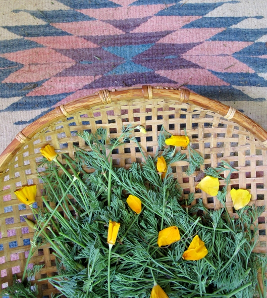 Cali poppy on rug