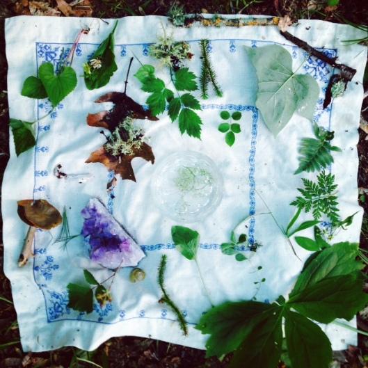 Intuitive plant medicine altar