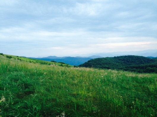 Max patch 1