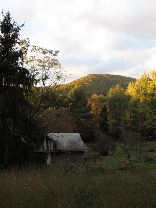 Fall hill
