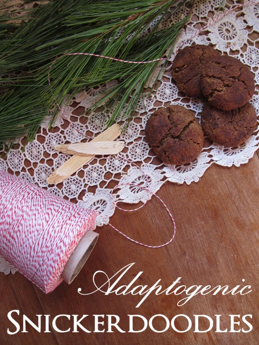 Adaptogenic snickerdoodles with text
