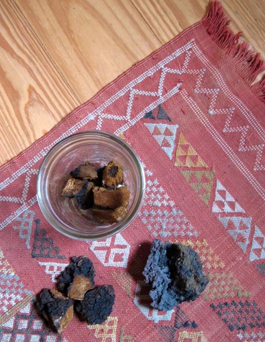 Chaga and Hematite rug