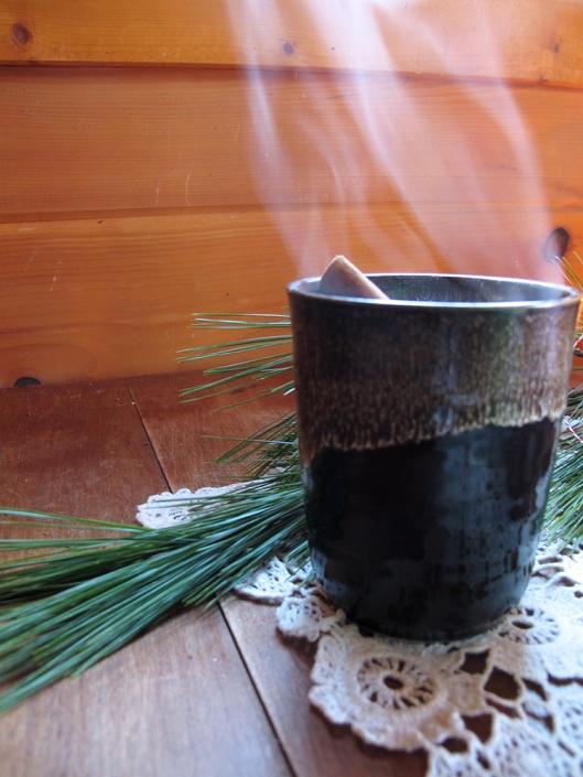 Chaga cocoa steaming