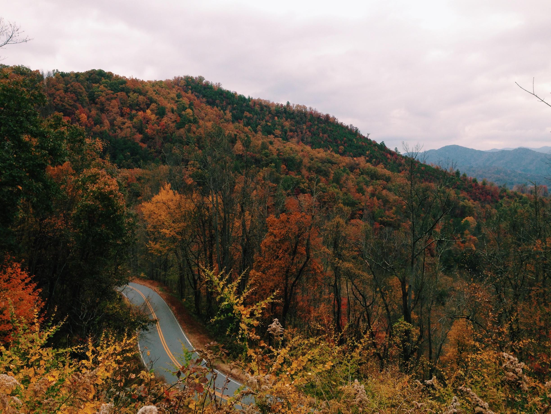 Autumn Road Revere