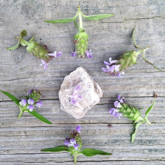 self-heal-mica-mandala