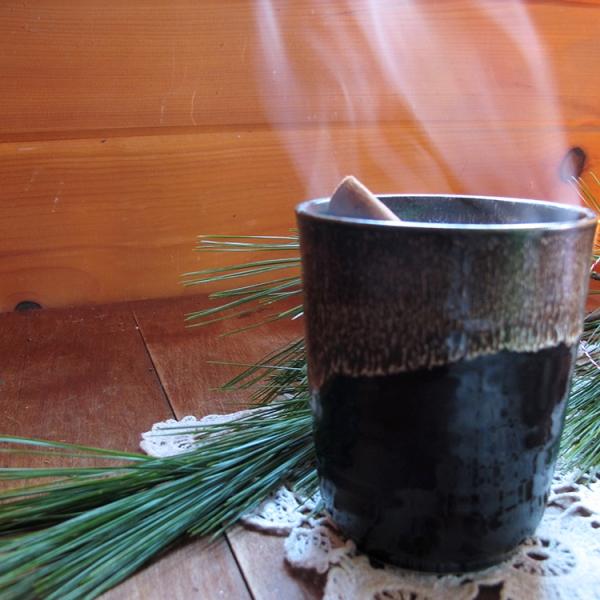 chaga-cocoa-steaming-square